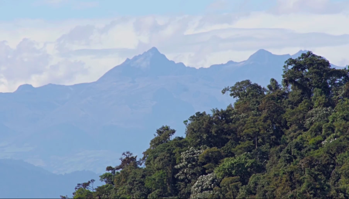Mining Concessions in Ecuador
