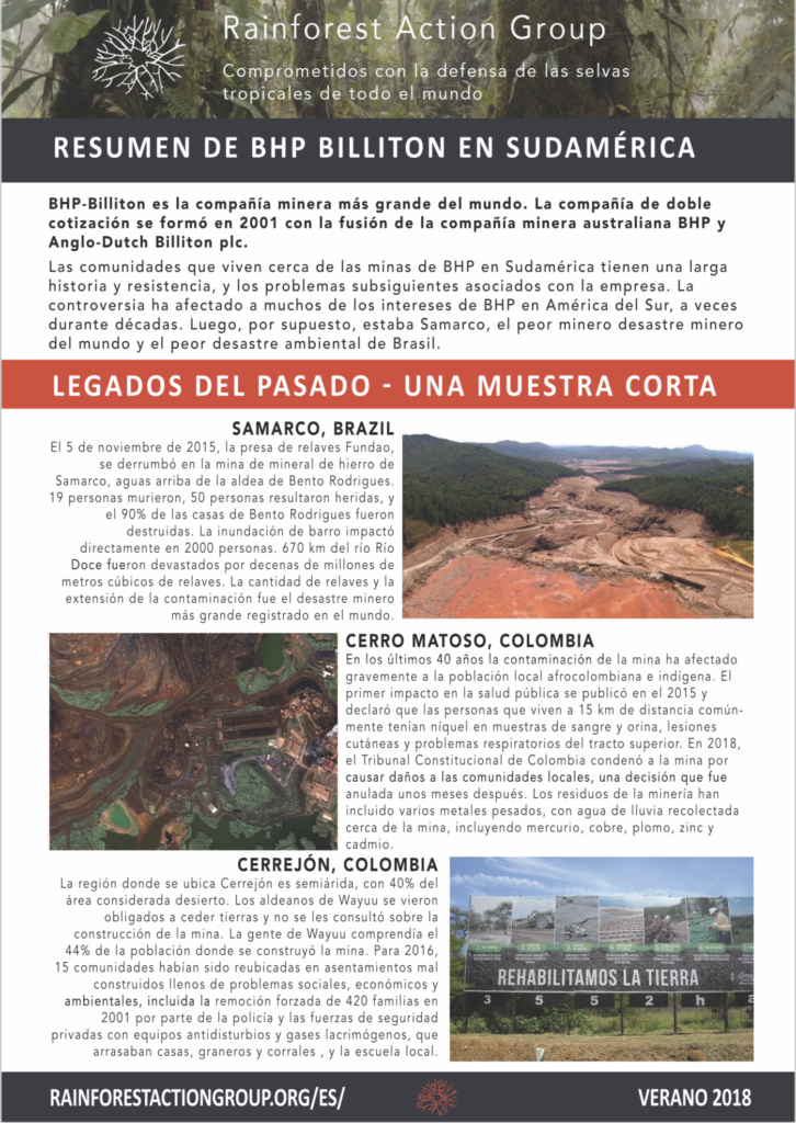 Rainforest Action Group Resumen de BHP en Sudamérica