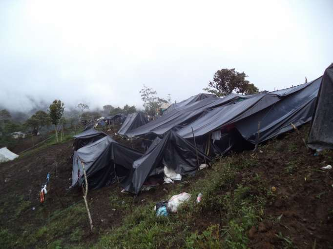 Image credit: La Hora Miners living in black plastic tents